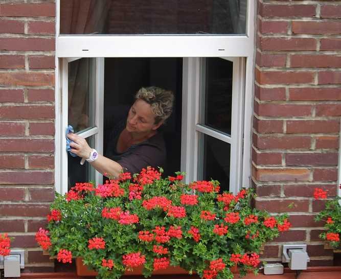 Mytí oken nemusí být pracné, pixabay.com