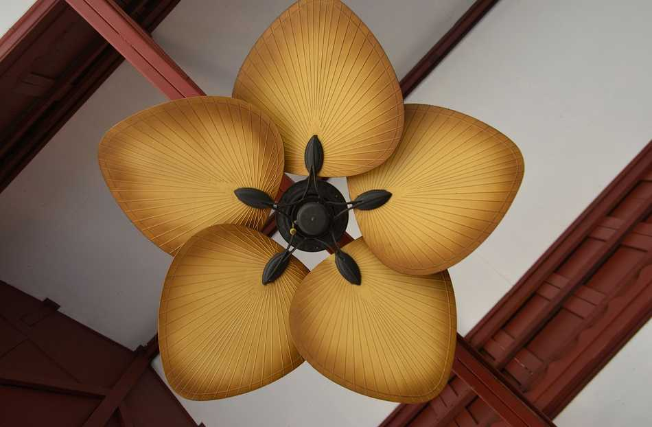 Stropní ventilátor ve tvaru palmových listů, pixabay.com