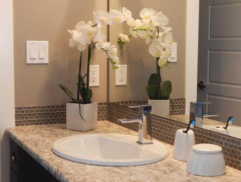 Zeleň v koupelně může mít řadu podob, pixabay.com